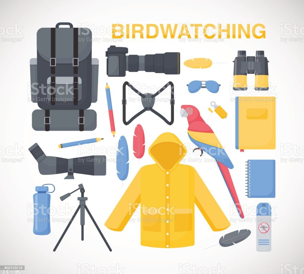 Birdwatching flat vector icons set vector art illustration
