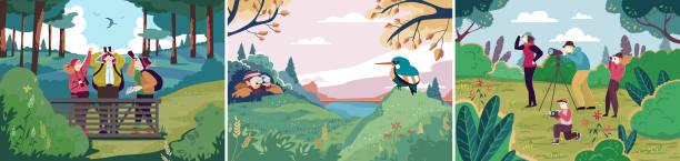 stockillustraties, clipart, cartoons en iconen met vogels kijken in de natuur, mensen outdoor hobby, ornithologie vogel o - ornithologie