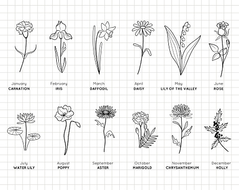 Birth month flowers simple design bundle. Minimal summer spring decoration. Silhouette vector flat illustration. Cutting file. Suitable for cutting software. Cricut, Silhouette