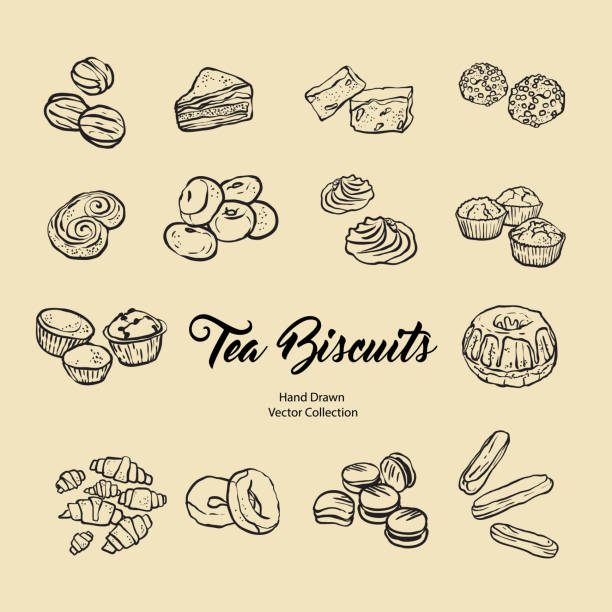 Biscuits isolated hand drawn vector set, line illustration old style. Vector tea biscuits, cookies for cooking logo, packaging design, cafe menu, banner, flayer, coffee shop in retro hand drawn style. vector art illustration