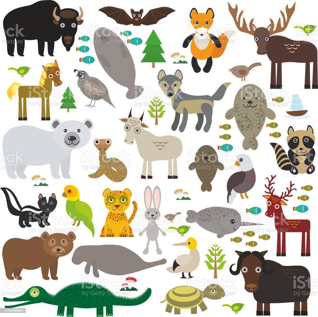 bison bat manatee fox elk horse wolf raccoon narwhal elk vector art illustration