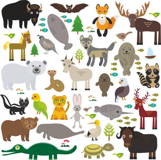 bison bat manatee fox elk horse wolf tabak narwal elk - bergziegen stock-grafiken, -clipart, -cartoons und -symbole