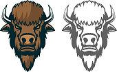 Bison head. mascot. Emblem of the sport team or club, Design element for  label, emblem, sign. Vector illustration.