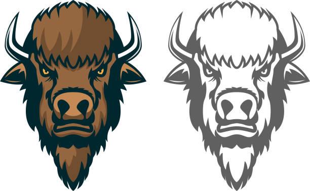 Bison head. mascot. Emblem of the sport team or club Bison head. mascot. Emblem of the sport team or club, Design element for  label, emblem, sign. Vector illustration. american bison stock illustrations