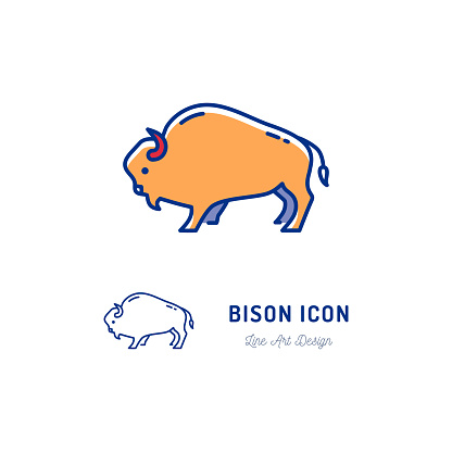 Bison icon. Thin line art colorful Bull sign. Vector flat icon