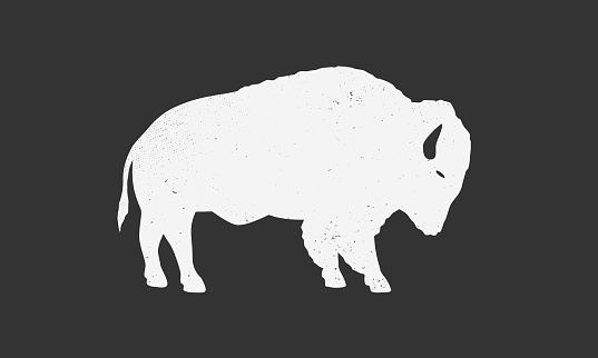 Bison silhouette. Bison, buffalo icon isolated on white background. Vector illustration