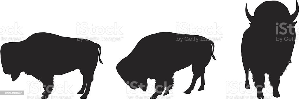 Bison Silhouette Collection vector art illustration