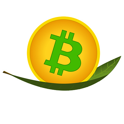 Bitcoin coin on green leaf isolated on white. Concept of mining cryptocurrencies using green renewable energy to protect environment.