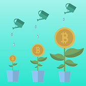 Bitcoin money flowers set with watering cans. Decorative plants in pots on a blue background. Vector illustration.