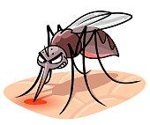 istock Biting Mosquito 1266937651