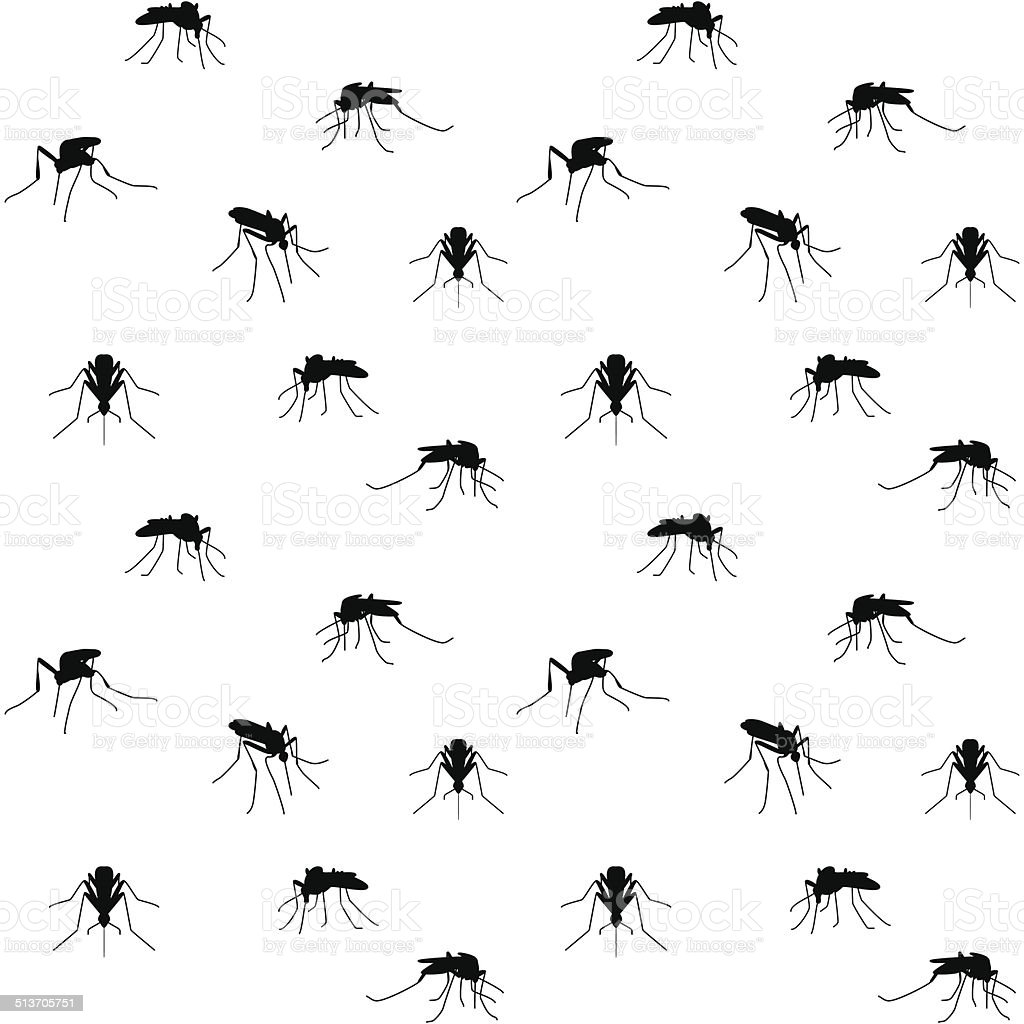 biting mosquitoes vector art illustration