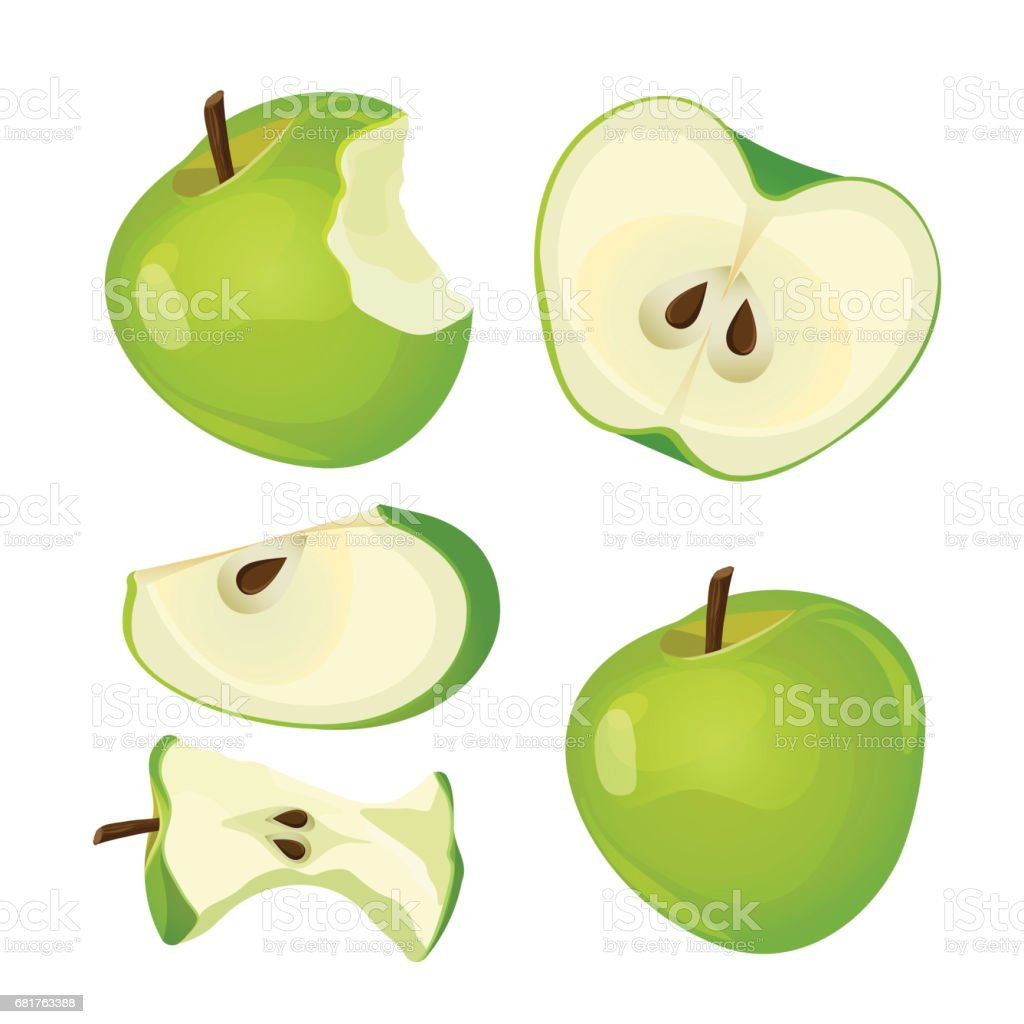 Bitten apple, whole, half and slice isolated on white background vector art illustration