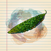 istock Bitter Gourd Drawing on Ruled Paper 1199575082