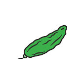 istock Bitter Gourd Vector Icon Outline Filled style illustration. 1205855415