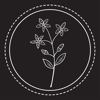 bitter herbs p 1 logo 1 ww herb dd
