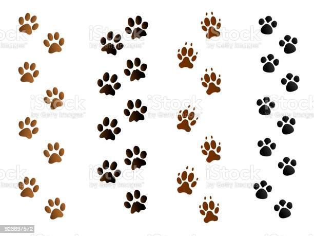 Black and brown pet paw print tracks on white vector id923897572?b=1&k=6&m=923897572&s=612x612&h=xmvjtvgjjqb0tmigeyaa7wx4h4uhzgc1t5gqtqsnq u=