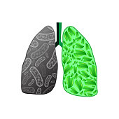 Healthy and ill human lungs silhouettes isolated on white background