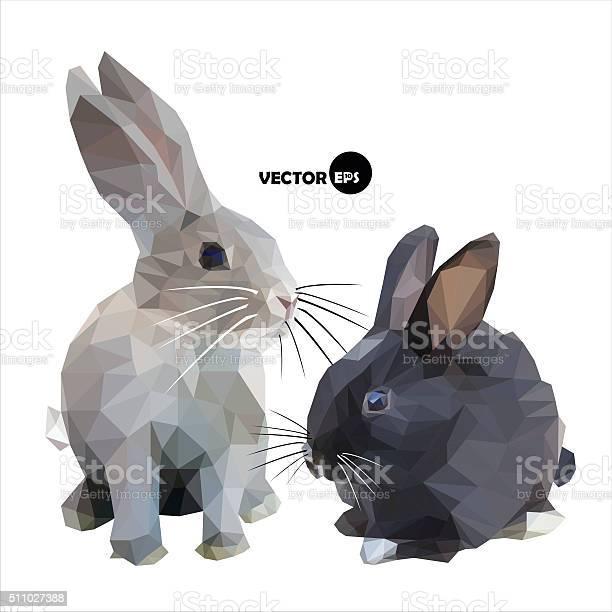 Black and grey rabbit on white background vector id511027388?b=1&k=6&m=511027388&s=612x612&h=hrhaa5zgpugnxst3  lofyglsah2bc10vqfmfdfultk=