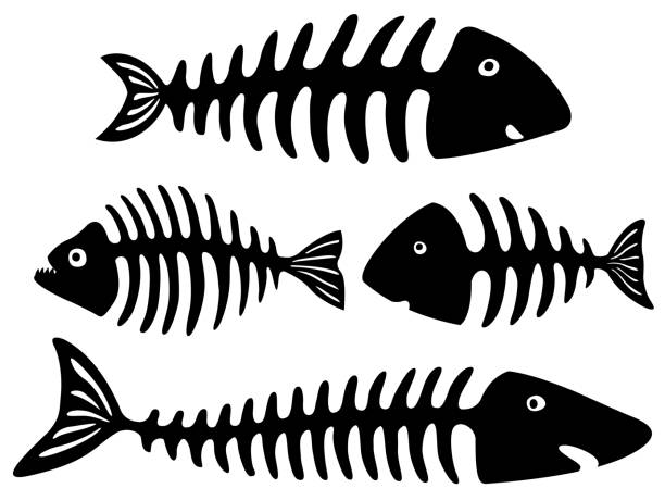 black and white art with fish bones - fish skeleton stock illustrations, clip art, cartoons, & icons