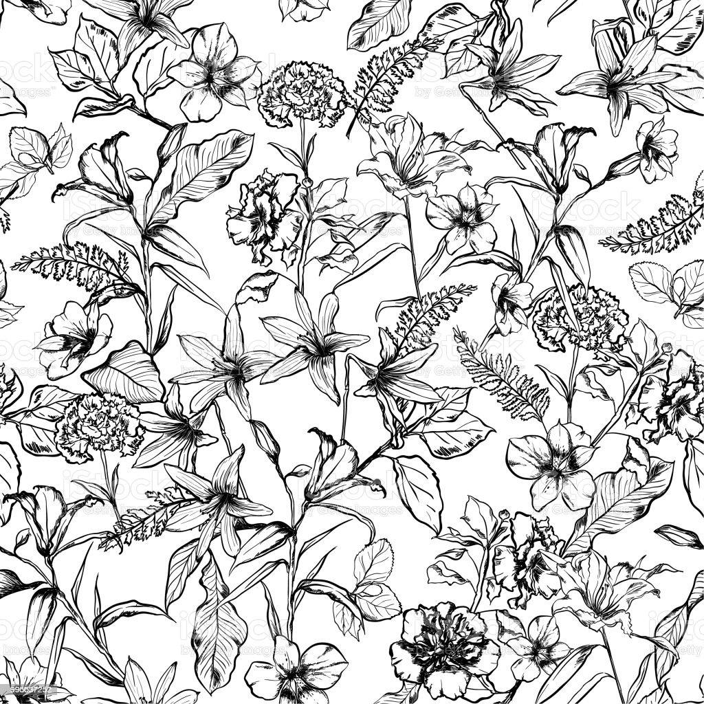 Schwarz Weiß Botanische Blumen In Den Garten Handgezeichnete