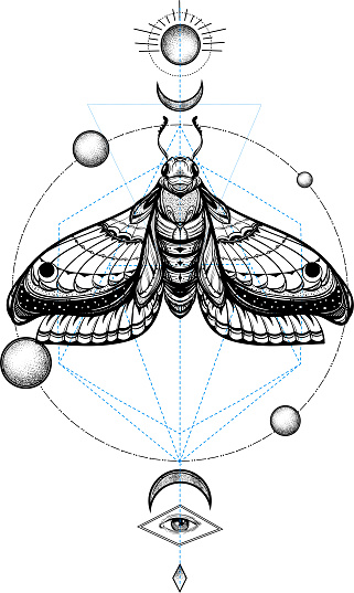 black and white butterfly on sacred geometry vector illustration