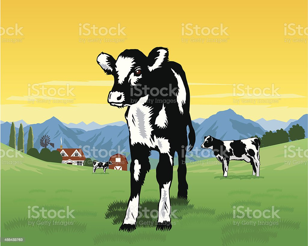 Black and White Calf vector art illustration