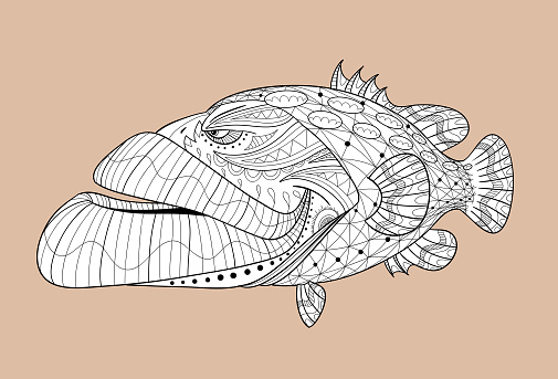 Black and white cartoon grouper for coloring with separate texture and separate background