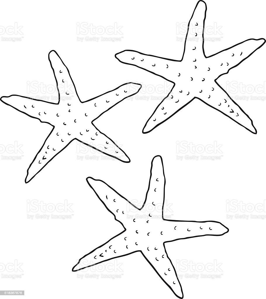 Bianco E Nero Fumetto Stelle Marine Immagini Vettoriali Stock E