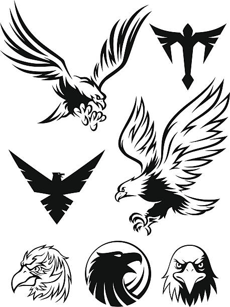 Eagle Clip Art, Vector Images & Illustrations - iStock