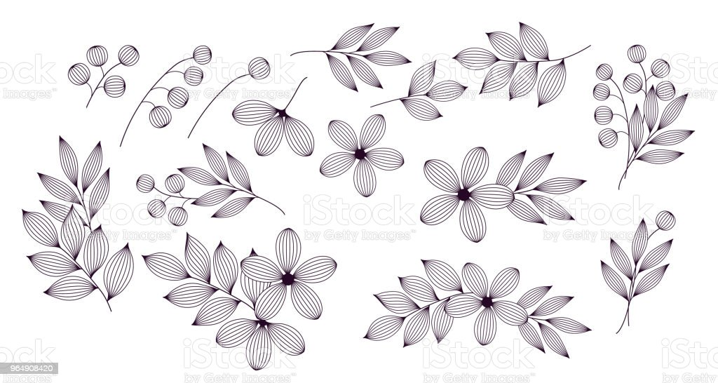 Black and white elegant leaves and flowers with veins floral elements set, vector royalty-free black and white elegant leaves and flowers with veins floral elements set vector stock vector art & more images of advertisement