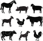 Vector illustrations of various common farm animals.