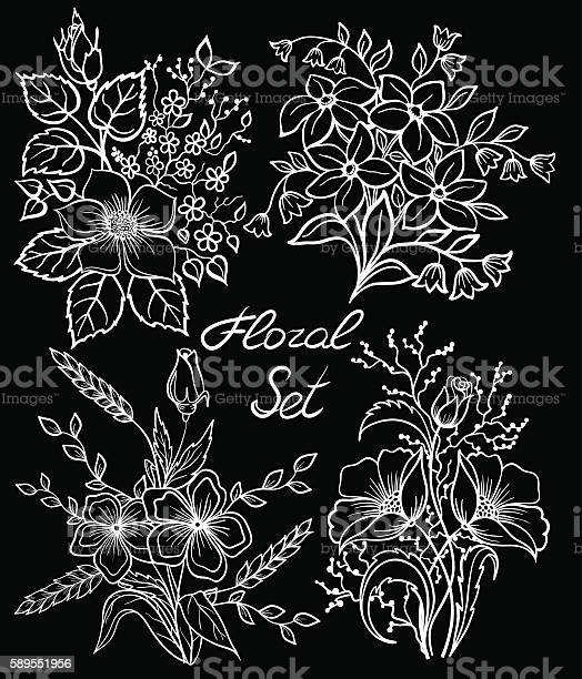 Black and white floral collection with leaves and flowers set vector id589551956?b=1&k=6&m=589551956&s=612x612&h=fvb25emlyqw4sgusqepnipuanluapcjxzk2ok31pv i=