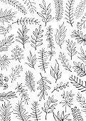 black and white floral hand drawn farmhouse style outlined twigs branches  background
