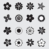 A collection of flowers in black and white