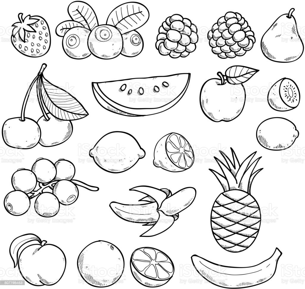 Line Art Fruits : Black and white fruits berries in sketch style stock