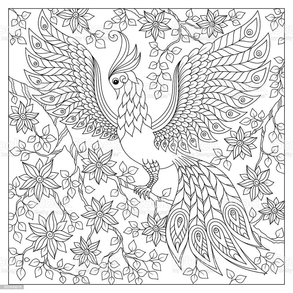 Bianco E Nero Doodle Disegnato A Mano Libera Per Libro Da Colorare