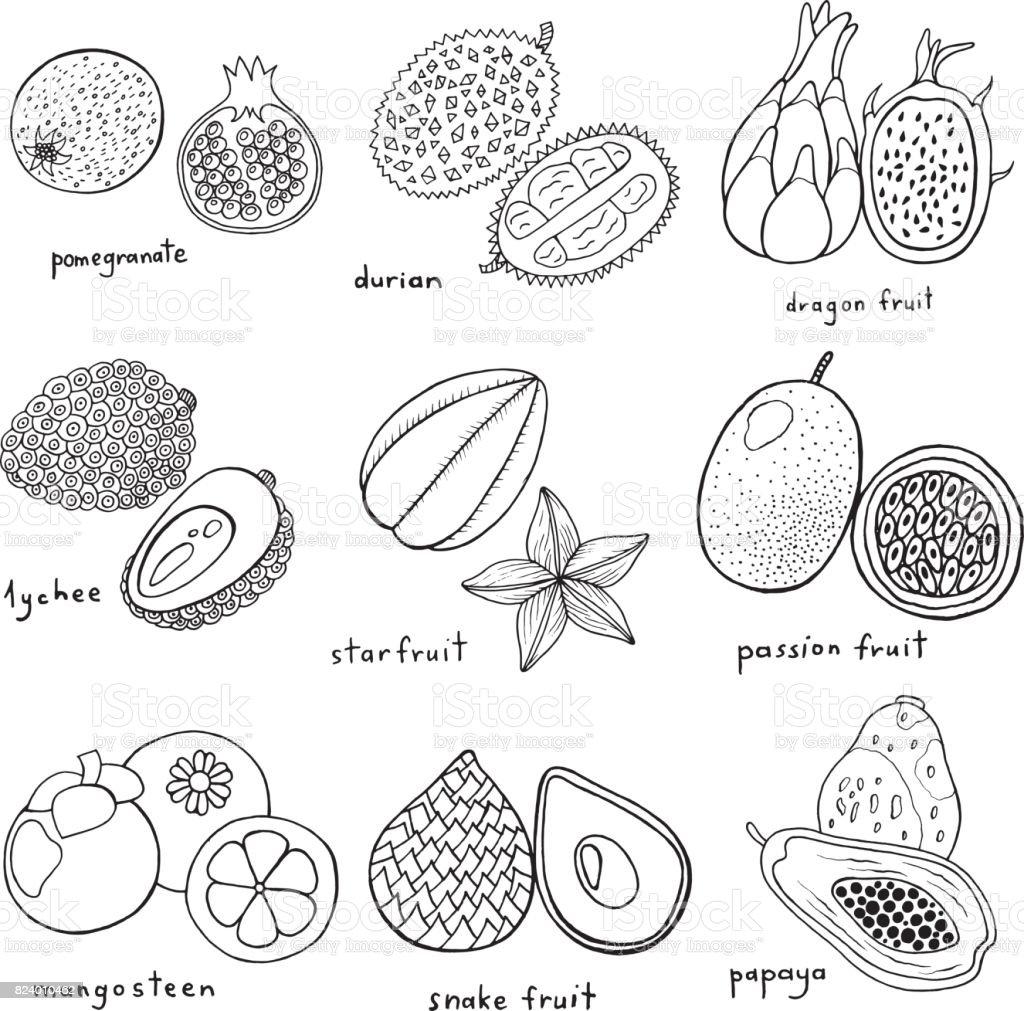Siyah Ve Beyaz Cizilmis Tropikal Egzotik Meyve Kumesiyle Ver