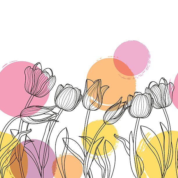 Black and white hand drawn tulip flowers and watercolor blots. Vector floral seamless horizontal background. Black and white hand drawn tulip flowers and watercolor blots. Spring background for greeting cards, textile print, banners and decoration. flower head stock illustrations