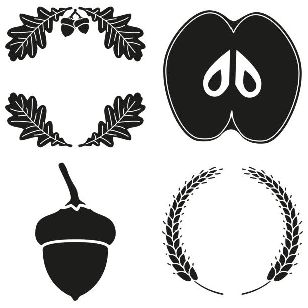 4 black and white harvest silhouette elements set 4 black and white harvest silhouette elements and wreath set. Seasonal fall plants. Autumn festival themed vector illustration for icon, label, sticker, badge, card, certificate or flayer decoration oak leaf stock illustrations