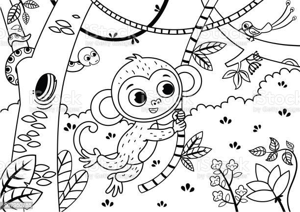 black and white illustration of a cute monkey in the jungle vector id