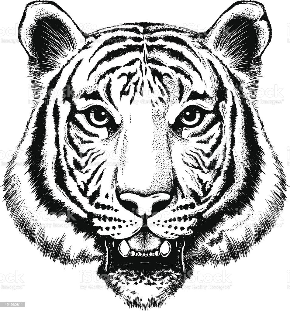 Black and white illustration of a portrait of a tiger