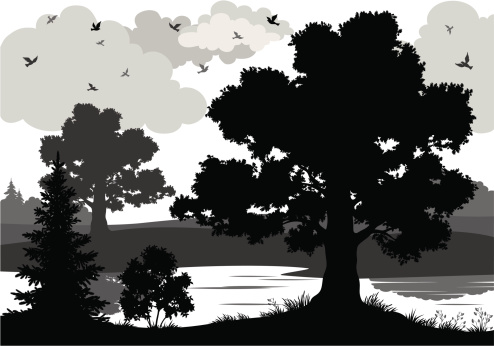 Black and white image of trees, river, and bird silhouettes