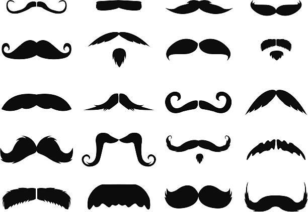 ilustrações, clipart, desenhos animados e ícones de bigodes - bigode