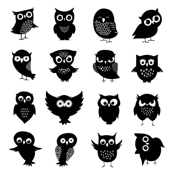 black and white owl silhouettes set - sowa stock illustrations