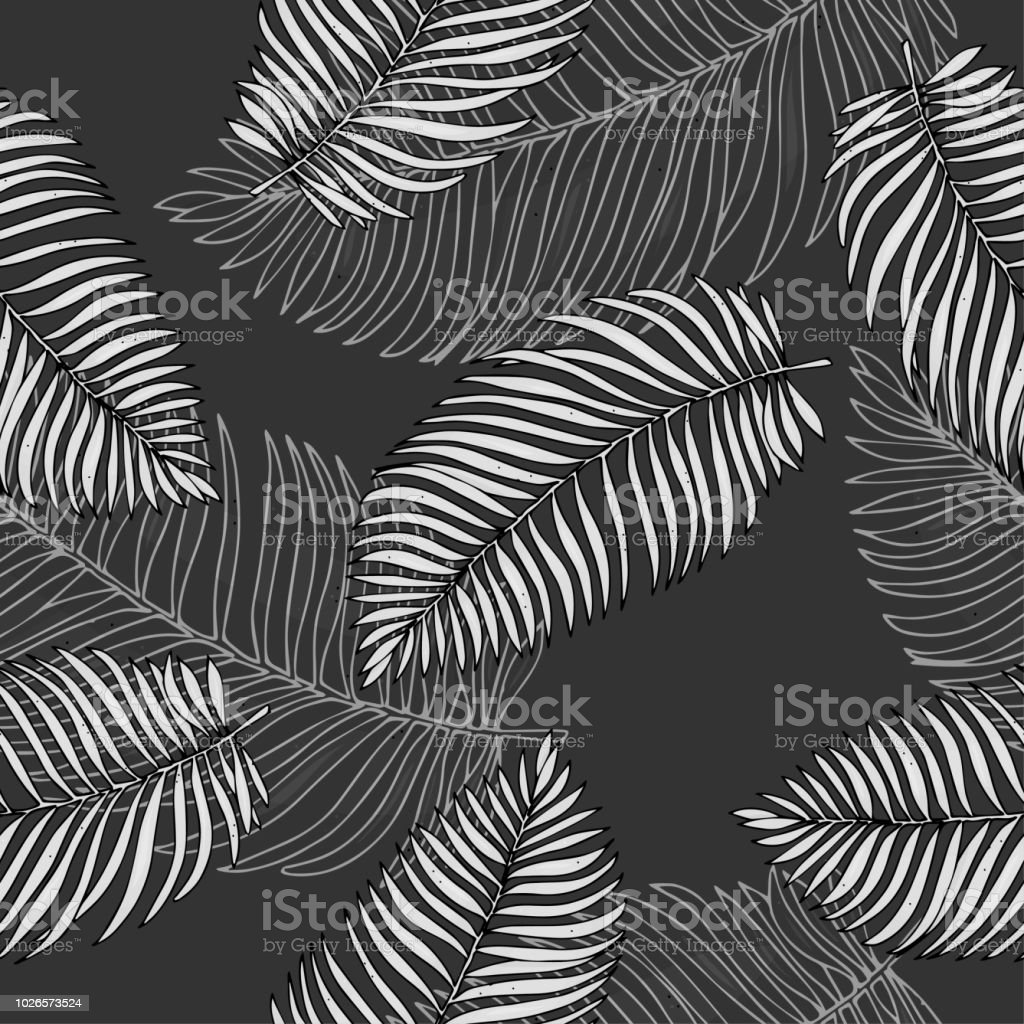Schwarz Weiss Muster Mit Tropischen Palmen Blatter Vektorillustration