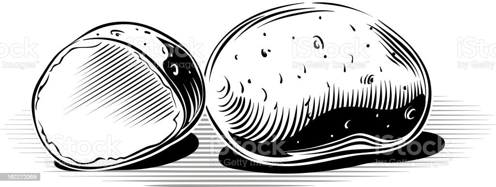 Black and white portrait of potatoes in a white background vector art illustration