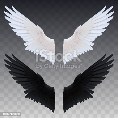 istock Black and white realistic wings 1087568430