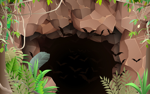 landscape of cave in the forest