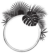 Vector Black and White Round frame with tropical leaves