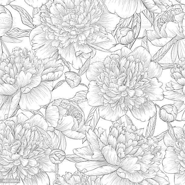 Black and white seamless background peonies with leaves and bud vector id485135954?b=1&k=6&m=485135954&s=612x612&h= rdms8gb32gnchhdh8nm6qngd7sp6qbjolrbl2ea0ha=